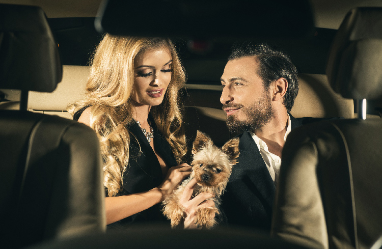 couple with dog in limousine