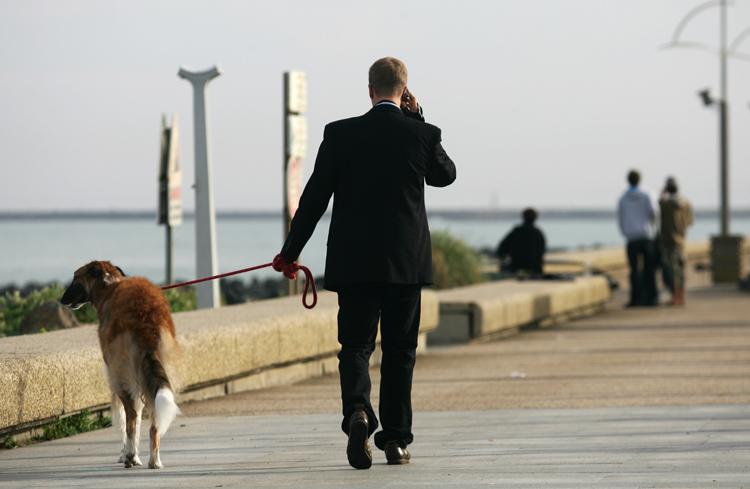 dog walker chauffeur on lakefront